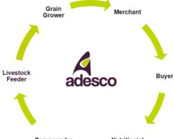 Delivering Quality, Sustainable Grain from Harvest to Animal